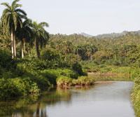 Cuba: diversidad biológica envidiable